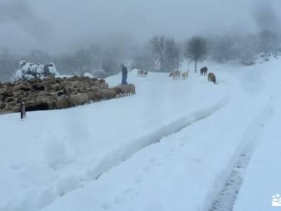 nieve, invierno, cañada; desfiladero del cares pueblo abandonado madrid la laguna negra fotos